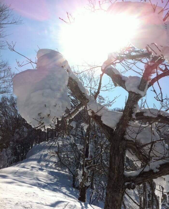 冬季アクティビティ